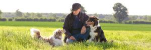 Hundetrainer Gerwin Jeltsch