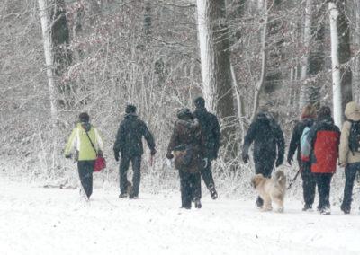 Winter Hundewanderung mit der Hundeschule Zufriedene Hunde