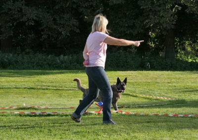 Körpersprachliches Longieren am Kreis in der Hundeschule Zufriedene Hunde