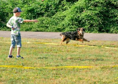 Longieren mit Hund für Fortgeschrittene ;-)
